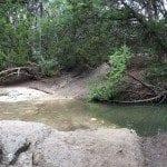 Trails-WalnutCreekPark2
