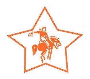 Camp Stewart logo