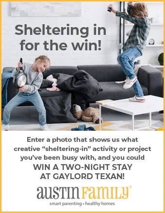 2020 Shelter In Photo Contest