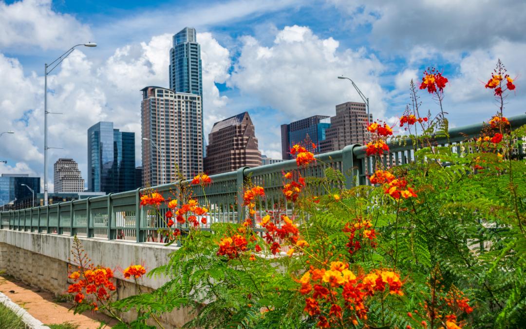 Keep Austin Beautiful Day