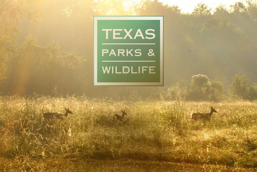 Biologists Remind the Public Not to Touch Wildlife
