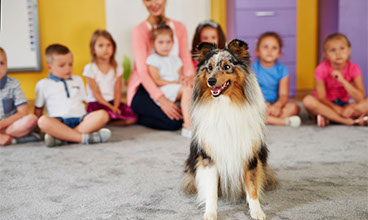 When Dogs Are More Than a Child's Best Friend
